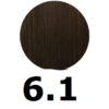 6-1-rubio-oscuro-ceniza-intenso