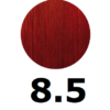 8-5-rojo-gilda