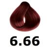 6-66-rojo